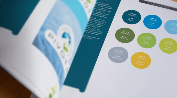 Réalisation d'une charte graphique pour le cluster PIVOTS à Orléans